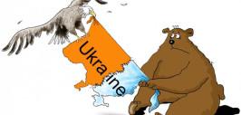 117171658_Medved_Ukraina