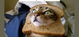 хлеба и зрелищ+