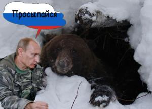 русский медведь3