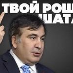 саакашвили-2
