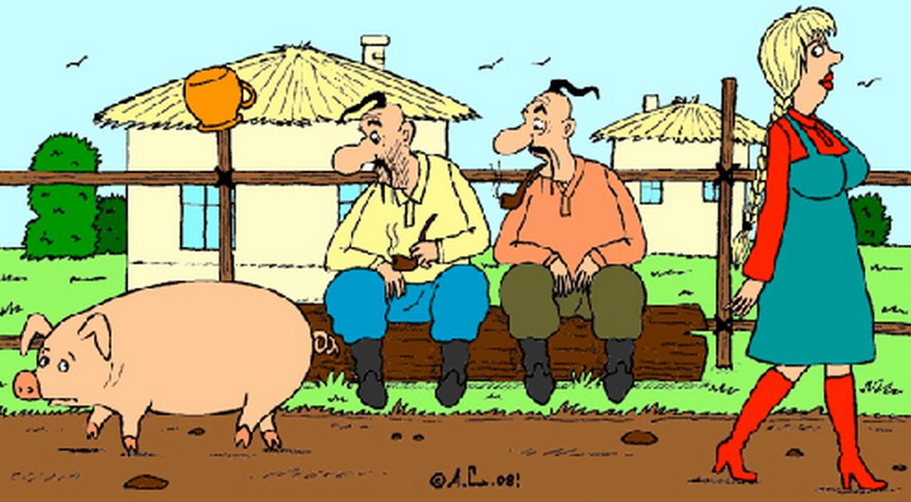 хохлы смотрят на свинью