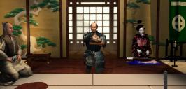 shogunw2010031409400427