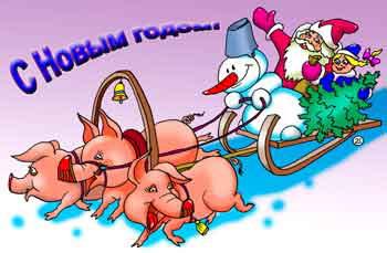 с новым годом свиньи