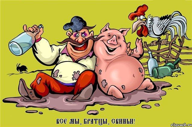 хохол и свинья