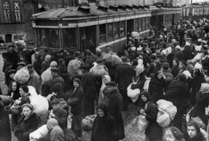 panika-1941