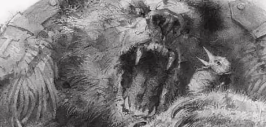 медведь на воеводстве-2